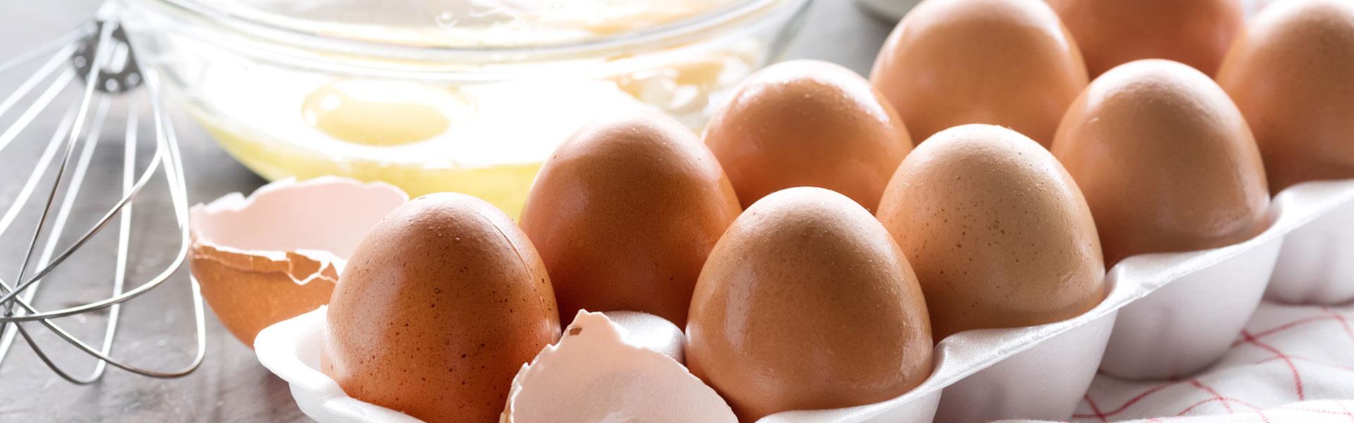 Jajka skup i sprzedaż